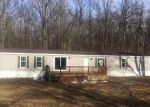 Foreclosed Home en W CADILLAC RD, Cadillac, MI - 49601