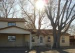 Foreclosed Home en E 2ND ST, Alamosa, CO - 81101
