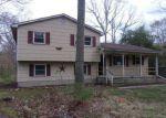 Foreclosed Home en HANDS MILL RD, Woodbine, NJ - 08270