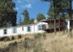 Foreclosed Home en OTTER CT, Alto, NM - 88312