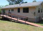 Foreclosed Home en S TWIN LAKES DR, Horseshoe Bend, AR - 72512