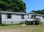 Foreclosed Home en N LA SALLE RD, Free Soil, MI - 49411