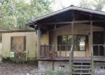 Foreclosed Home en SE SILKY CT, High Springs, FL - 32643