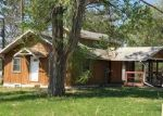 Foreclosed Home in LAKE AVE W, Hill City, MN - 55748