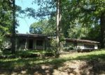 Foreclosed Home en BLUNK RD, Galena, MO - 65656