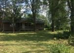Foreclosed Home en S WRIGHT RD, Eagle, MI - 48822