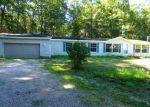 Foreclosed Home en W ISABELLA RD, Shepherd, MI - 48883