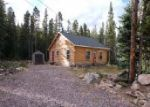 Foreclosed Home en UPPER FOREST RD, Idaho Springs, CO - 80452