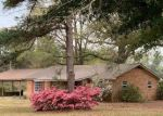 Foreclosed Home in COUNTY ROAD 6, Castleberry, AL - 36432