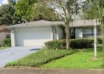Foreclosed Home en PADDLEWHEEL DR, Brandon, FL - 33511