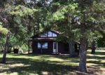 Foreclosed Home en ARBOR BRIDGE RD NE, Waskish, MN - 56685