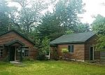 Foreclosed Home in S MAPLE VALLEY RD, Saint Helen, MI - 48656