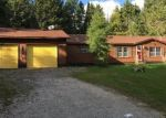 Foreclosed Home en E M 134, Cedarville, MI - 49719