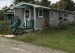 Foreclosed Home en ROSE CITY RD, Hale, MI - 48739