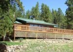 Foreclosed Home in INDIAN CREEK RD, Florissant, CO - 80816