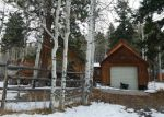 Foreclosed Home in ASPEN DR, Ridgway, CO - 81432