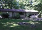 Foreclosed Home en E KIRT RD, Lake Leelanau, MI - 49653