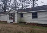 Foreclosed Home in N HORSEHEAD LAKE DR, Rodney, MI - 49342
