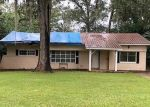 Foreclosed Home en DECATUR ST, Marianna, FL - 32446