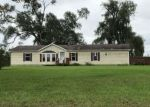 Foreclosed Home en E BROWN RD, Mayville, MI - 48744