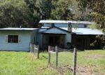 Foreclosed Home en SW 202ND ST, Newberry, FL - 32669