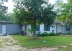 Foreclosed Home en MUSTANG LN, Chipley, FL - 32428