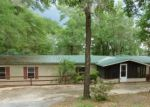 Foreclosed Home en MOSQUITO RD, Chipley, FL - 32428