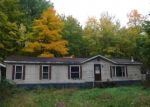 Foreclosed Home en E TORGERSON RD, South Range, WI - 54874