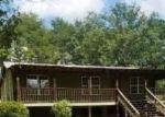 Foreclosed Home in BUFFALO CREEK LN, Brookwood, AL - 35444