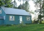 Foreclosed Home in W LAPORTE RD, Wheeler, MI - 48662
