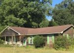 Foreclosed Home in CORN MILL RD, Beulaville, NC - 28518