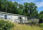 Foreclosed Home en SEVERS RD, Seymour, MO - 65746