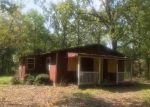 Foreclosed Home in ADOBE TRL, Flint, TX - 75762