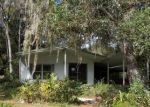 Foreclosed Home en CR 426C, Lake Panasoffkee, FL - 33538
