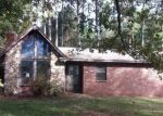 Foreclosed Home in COUNTY ROAD 539, Hanceville, AL - 35077