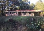 Foreclosed Home in COUNTY ROAD 278, Nacogdoches, TX - 75961