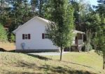 Foreclosed Home in COPPERHILL CHURCH LN, Warne, NC - 28909