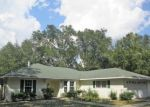 Foreclosed Home en NE 128TH LN, Bronson, FL - 32621
