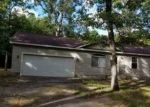 Foreclosed Home in E CHURCH RD, Twin Lake, MI - 49457