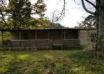 Foreclosed Home in SYCAMORE LN, Nauvoo, AL - 35578