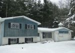 Foreclosed Home in W RATHBUN RD, Burt, MI - 48417