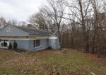 Foreclosed Home en EVERGREEN LN, Bluemont, VA - 20135