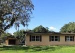 Foreclosed Home in W IMOGENE ST, Arcadia, FL - 34266