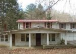 Foreclosed Home in JACKS CREEK RD, Lewistown, PA - 17044
