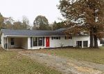 Foreclosed Home in LAIR LN, Cherokee, AL - 35616