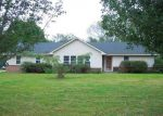 Foreclosed Home in THOMPSON DR, Minor Hill, TN - 38473
