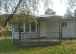 Foreclosed Home in TOMS FORK RD, Summersville, WV - 26651