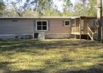 Foreclosed Home en LAKEVIEW DR, Ray City, GA - 31645