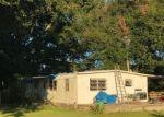 Foreclosed Home in STATE ROAD 247, O Brien, FL - 32071
