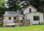 Foreclosed Home en WASHINGTON ST, Union City, MI - 49094